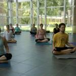 Yoga_Advocacy_Center1