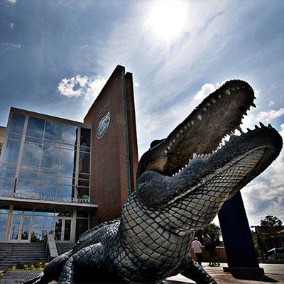 Photo of gator statue